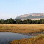 Bandhavgarh-Forest-View