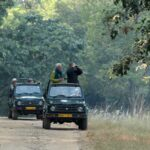Safari-Bandhavgarh-National-park
