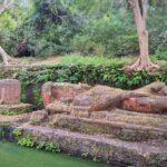 Shesh-Shaiya-Bandhavgarh-park