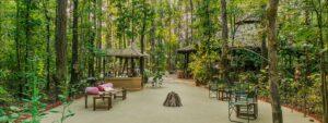 open-area-kanha-jungle-lodge